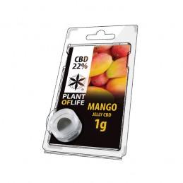 JELLY 22% CBD MANGO FRUIT 1G