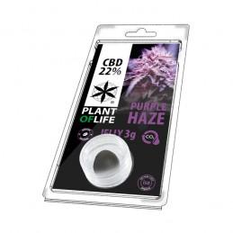JELLY 22% CBD PURPLE HAZE 3G