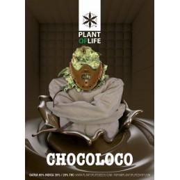 POSTER CHOCOLOCO 50X70