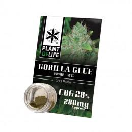 POLLEN CBG 28% GORILLA GLUE 1G