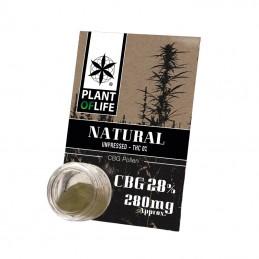 POLLEN CBG 28% NATURAL...