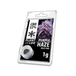 JELLY 22% CBD PURPPLE HAZE 1G