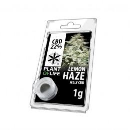 JELLY 22% CBD LEMON HAZE 1G