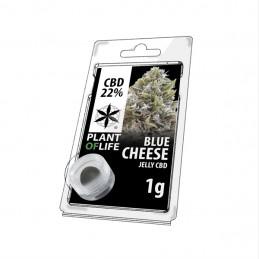 JELLY 22% CBD CHEESE BLUE 1G