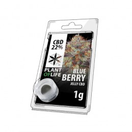 JELLY 22% CBD BLUEBERRY 1G