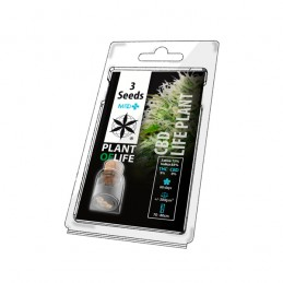 CBD LIFE PLANT MEDICAL 3...