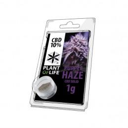 SOLIDO 10% CBD PURPLE HAZE