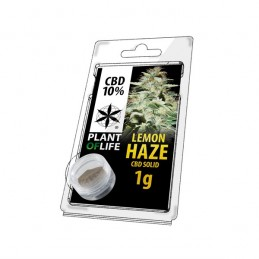 SOLIDO 10% CBD LEMON HAZE